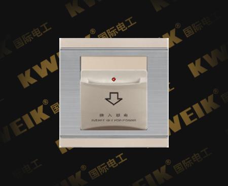 插卡取电(带延时)(¥18800)